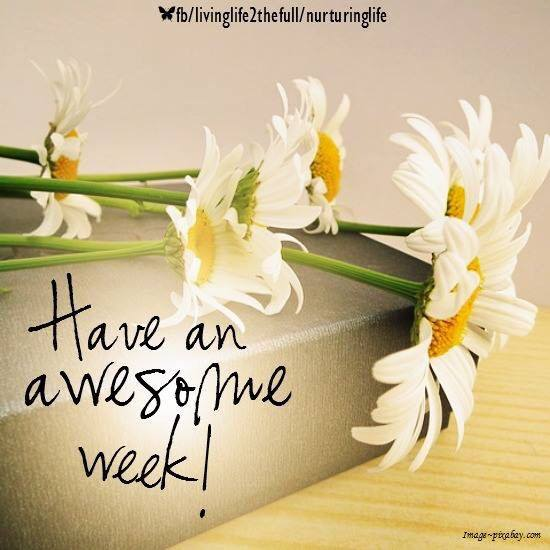 Image result for week ahead have a great week